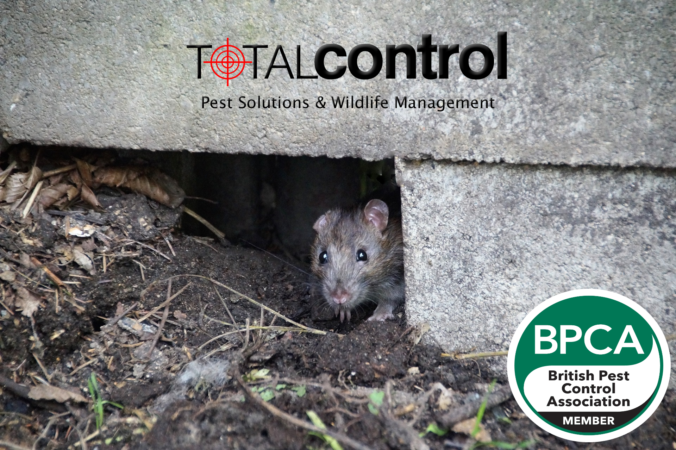 Total Control Pest Solutions